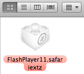 FlashPlayer11