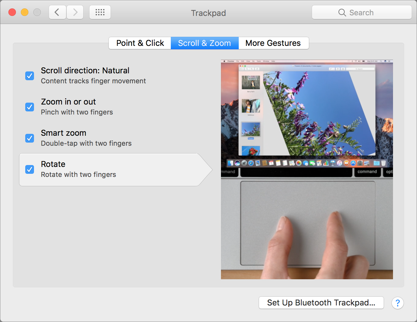 trackpad scroll & zoom setting