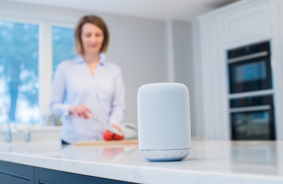Smart Speaker Privacy Risks