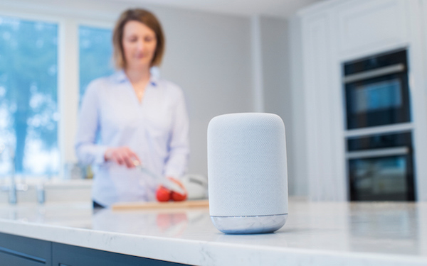 Is Your Smart Speaker Spying on You?