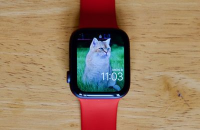 How to Sync, View, and Use Photos on the Apple Watch
