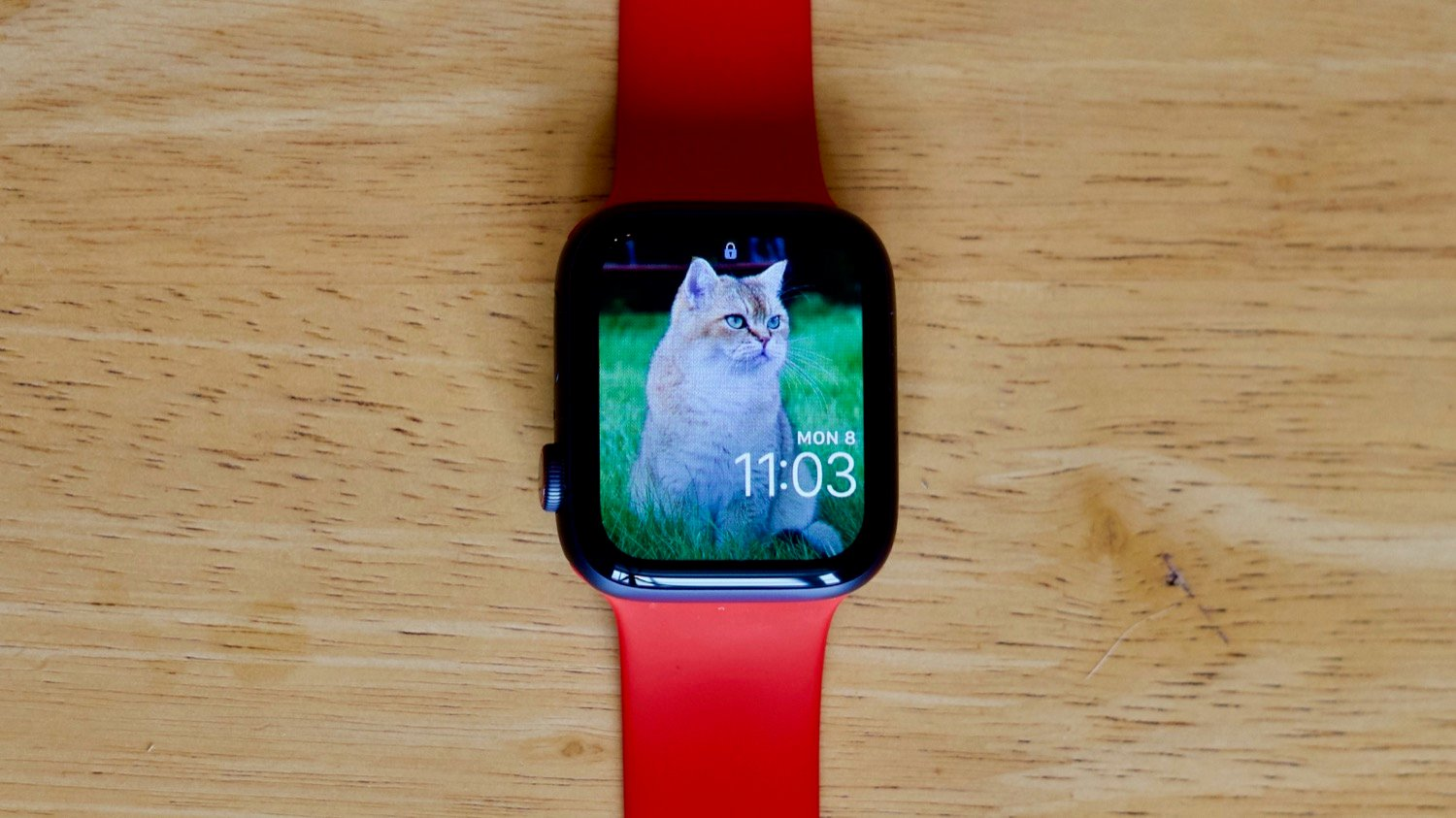 How To Sync View And Use Photos On The Apple Watch The